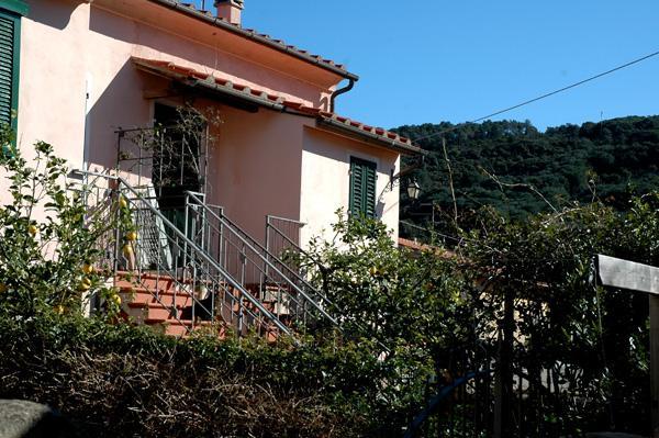 Vacanza Isola d'Elba: Viottolo